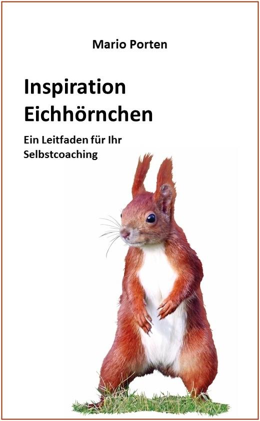 """Es ist soweit: """"Inspiration Eichhörnchen"""" – mein neues Buch"""
